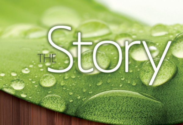 TheStory_Cover2